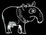 tapir1b negatif.jpg